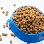 Mespo leverer udstyr til petfood industrien